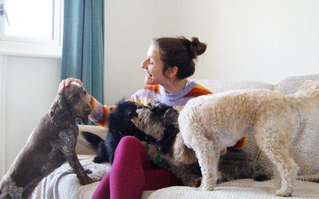 Bright Eyes Dog Care and Training - Cuddles 2